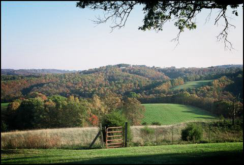 Grazing pasture with scenic OZark Mountains in the background